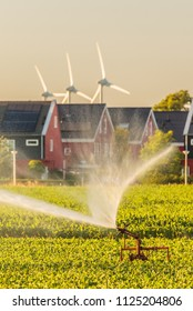 Irrigation sprinkler on farmland in front of Dutch houes with solar panels and windmills