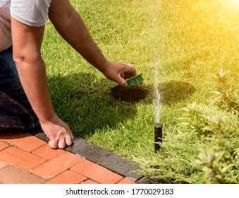 Irrigation system watering garden lawn. Landscape design.