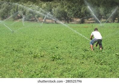 Irrigation systems. Blue sky