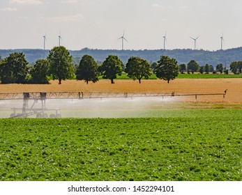 irrigation of vegetable crops at agricultural field