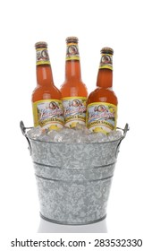 IRVINE, CA - JUNE 1, 2015: An ice bucket of Leinenkugel Summer Shandy. Leinenkugel was founded in Chippewa Falls, WI, in 1867 by Jacob Leinenkugel.