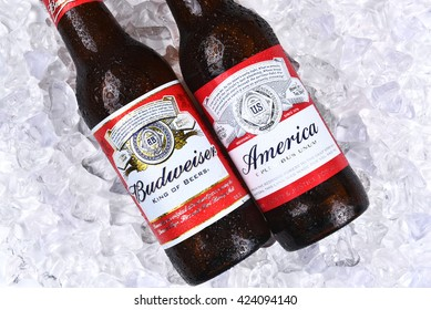IRVINE, CA - MAY 21, 2016: Two Budweiser Beer Bottles on ice. A limited edition America bottle and a traditional label from Anheuser-Busch.