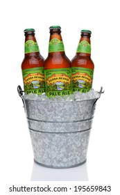 IRVINE, CA - MAY 25, 2014: Sierra Nevada Pale Ale bottle in a bucket of ice. Sierra Nevada Brewing Co. was established in 1980 by homebrewers in Chico, California.