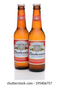 IRVINE, CA - MAY 27, 2014: Two bottles of Budweiser with condensation. From Anheuser-Busch InBev, Budweiser is one of the top selling domestic beers in the United States.