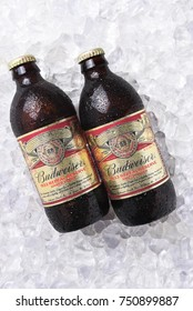 IRVINE, CA - NOVEMBER 7, 2017: Bottles of Budweiser 1933 Repeal Reserve Amber Lager on ice. Budweiser is releasing this historically inspired recipe to celebrate the Repeal of Prohibition.