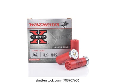 IRVINE, CALIFORNIA - AUGUST 26, 2016: Winchester 12 gauge Shotgun Shells. Winchester is a leading manufacture or guns and ammo in the United States.