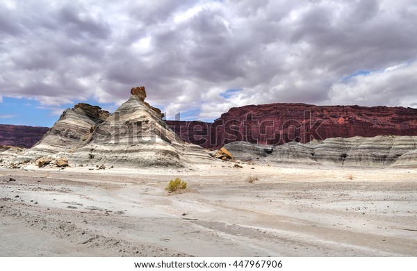 Ischigualasto Provincial Park (Valle de la Luna).The natural park located in the north-east of the province of San Juan, north-western Argentina