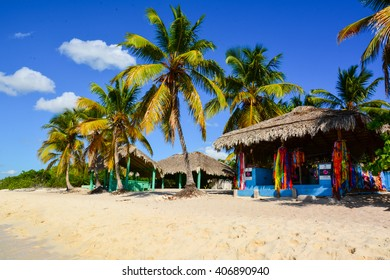 ISLA CATALINA, DOMINICAN REPUBLIC - JANUARY 08, 2016 - Caribbean tropical beach with palm trees Dominican Republic