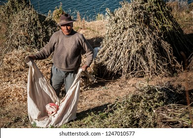 ISLA DEL SOL, BOLIVIA - AUGUST 18, 2017 : Unidentified Bolivian worker on Isla del Sol, on the Titicaca lake, the largest highaltitude lake in the world 3808 mt - Bolivia