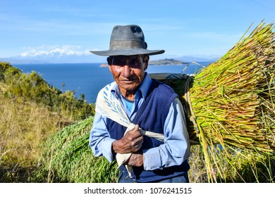 Isla del Sol, La Paz, Bolivia, 18 May 2017: A farmer with wheat at the Titicaca Lake (Bolivia)