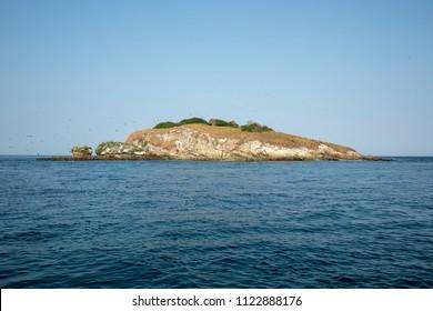 Isla Pachequilla, Archipielago Las Perlas en Panama