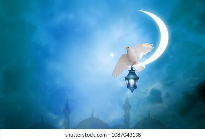 Islamic greeting  Eid Mubarak cards for Muslim Holidays.Eid-Ul-Adha festival celebration . Ramadan Kareem background. Moon and Lantern Lightning in sky.Crescent and Dove