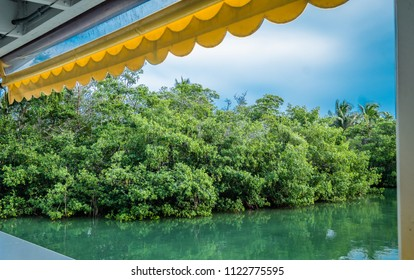Islamorada, FL / USA - 05/30/2018: Lorelei water front bar and restaurant in the Florida Keys. View of mangroves, stormy sky, and yellow roll down cover. Framed by posts and yellow cover.