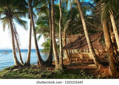 Island hut and palm trees during Siargao Sunset, Philippines