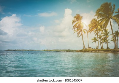 island landscape - ocean palm trees and blue sky