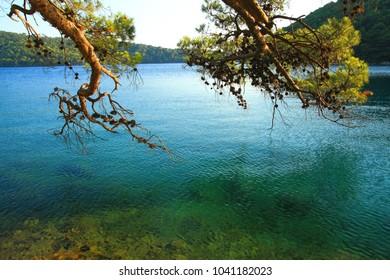 Island Mljet, National park in Croatia