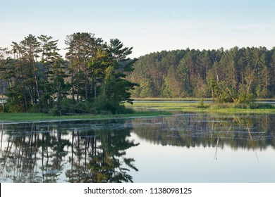 Island with pine trees on a calm northern Minnesota river at dawn