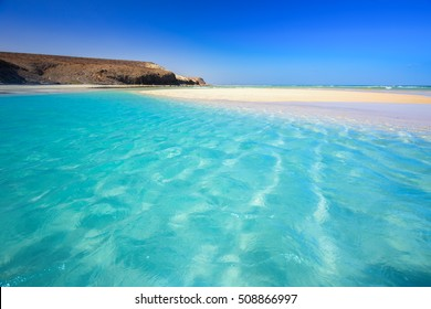 Island with sandy beach, green lagoon and clear water, Fuerteventura, Canary island, Spain.