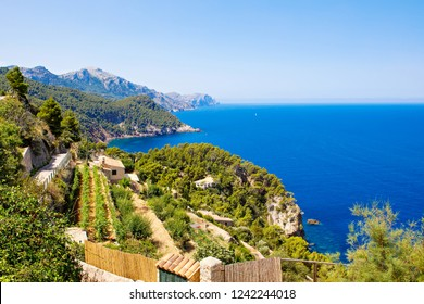 Island scenery, seascape of Mallorca Spain. Idyllic coastline of Majorca, Mediterranean Sea on sunny day. Turquoise water and green hills of Serra de Tramuntana.