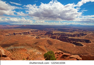 """Island of the sky"" of the Canyonlands Narional Park in Utah, USA"