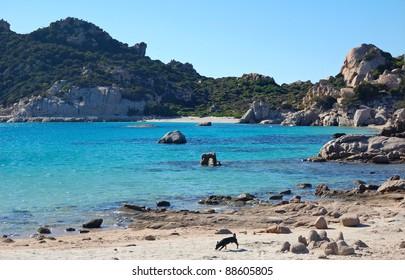 Island of Spargi - La Madddalena Archipelago - Sardinia