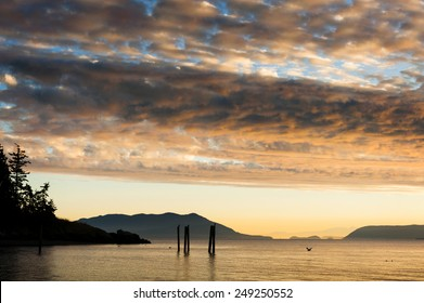 Island Sunset. Cormorants sitting on old pilings in Legoe Bay on Lummi Island, Washington. This dramatic sunset also features Orcas Island in the background.