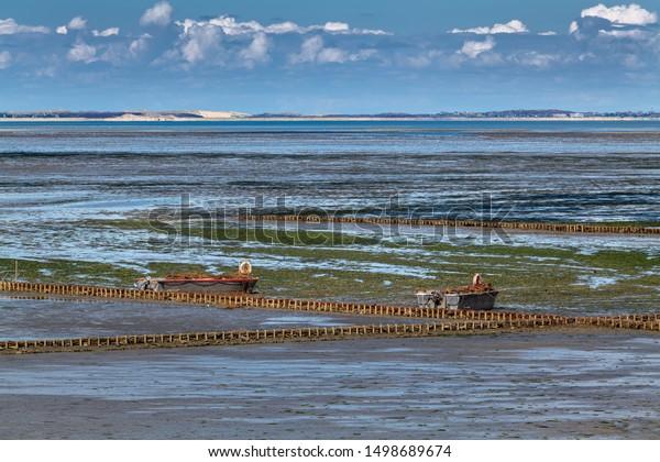 Island Sylt Germany Coastline Near Keitum Stock Photo Edit Now