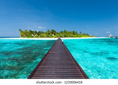 Island in the tropical ocean. Maldives.