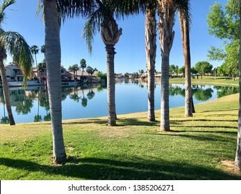 The Islands in Gilbert, Arizona