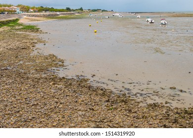 Isle of Re, France - May 09, 2019: Boats in harbour of La Flotte village on Ile de Re island in France.