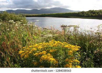 Isle of Skye - Skye is one of the islands in Scotland - Isle of Skye is part of the archipelago of the internal Hebrides