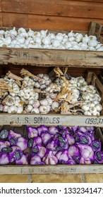 Isle of Wight, United Kingdom - August 28, 2018: Garlic stand at Garlic Farm, populat toutist destination
