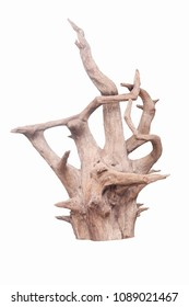 Isolate of beautiful timber use for decorating in the aquarium on white background with clipping path.