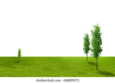 isolate grass field on white background