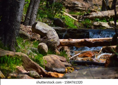 Isolate And Serene Babbling Brook
