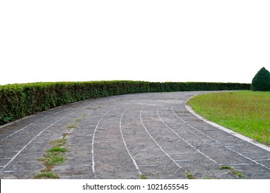 isolate walkway With grass in park