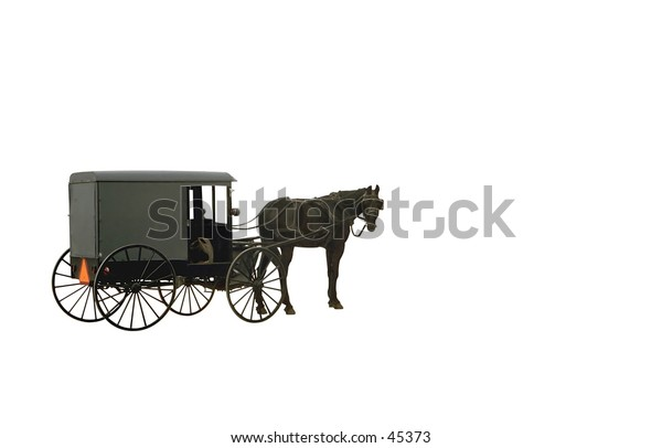 An isolated Amish Wagon and horse