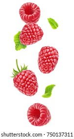 Isolated berries in the air. Falling raspberry fruits with leaves isolated on white background with clipping path