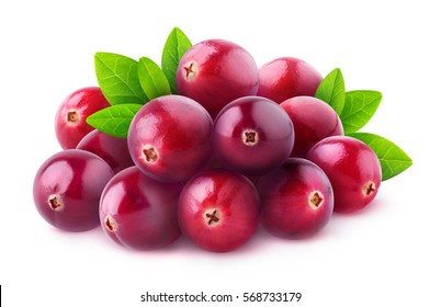 Isolated berries. Pile of fresh cranberry fruits isolated on white background with clipping path