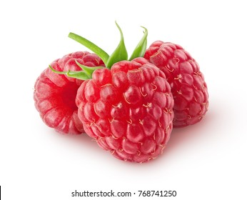 Isolated berries. Three raspberry fruits  isolated on white background with clipping path