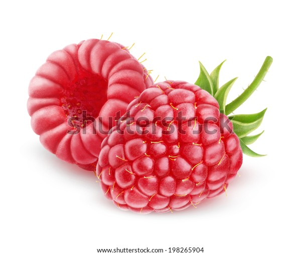 isolated berries. Two fresh raspberries isolated on white background