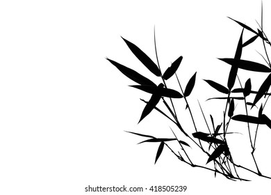 isolated black bamboo leaves empty background