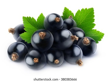 Isolated black currants. Pile of fresh black currant berries with leaf isolated on white background with clipping path