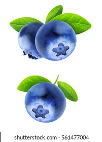 Isolated blueberries. Two images of blueberry fruits on a branch with leaves isolated on white background with clipping path