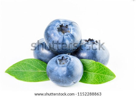 Isolated Blueberry Four Fresh Blueberries Leaves Stock Photo