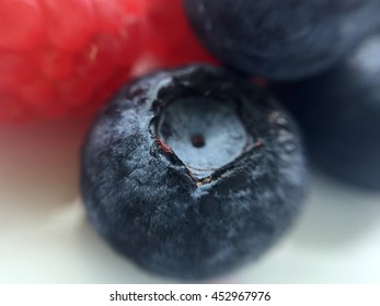 Isolated blueberry on a white plate with blueberries and red raspberries in the background