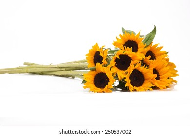 Isolated bouquet of sunflowers on a white background