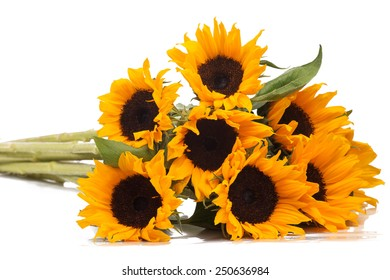 Isolated bunch of sunflowers on a white background
