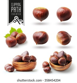 Isolated chestnut set with clipping path