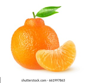Isolated citrus fruit. Clementine or minneola tangelo whole citrus fruit and one peeled segment on white background with clipping path